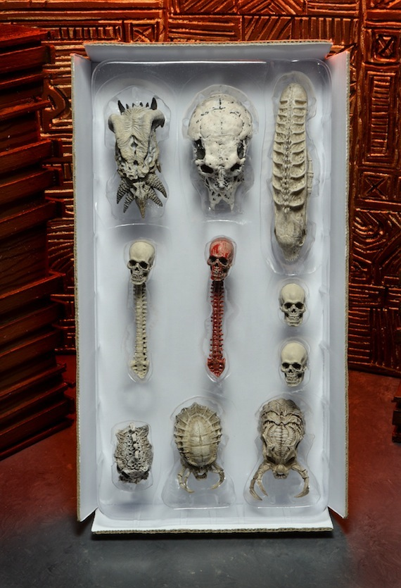 Skull_Set_01
