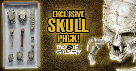 predator skulls feat img copy